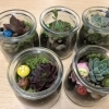 Horticultural-Stress-Reduction-Workshop